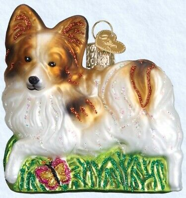 Old World Christmas Playful Papillon Glass Ornament 12492 Decoration FREE BOX