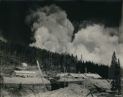1924 Press Photo Forest fire