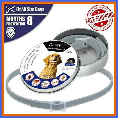 DEWEL Dogs Seresto Flea And Tick 63cm Collar For Big Dogs 8 Months Protection