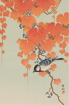 Koson / Shoson : Great-Tit & Grape Vine : Print Of A Japanese Woodblock Artwork