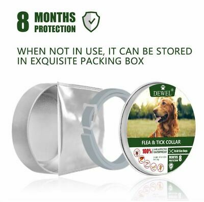 DEWEL 63CM Collar DOG Tick And Flea Treatment 8 Months Protection - USA STOCK