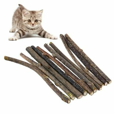 Pure Natural Catnip Pet Cat Toy Molar Toothpaste Branch Cleaning Teeth Sticks