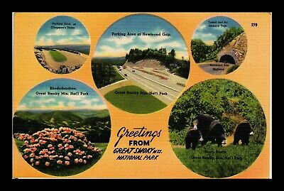 Dr Jim Stamps Us Postcard Greetings From Great Smoky Mountains Tennessee Linen
