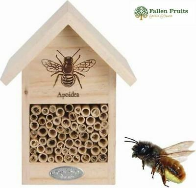 Bee and Bug Hotel House Bamboo Silhouette Design from Fallen Fruits