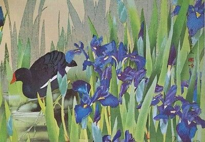 MOORHEN & IRIS : by RAKUSAN - Old Art Print of a Japanese Woodblock / Woodcut