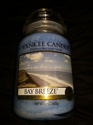 YANKEE CANDLE BAY Breeze Large Jar Candle 220z (pandora smell from disney  world)