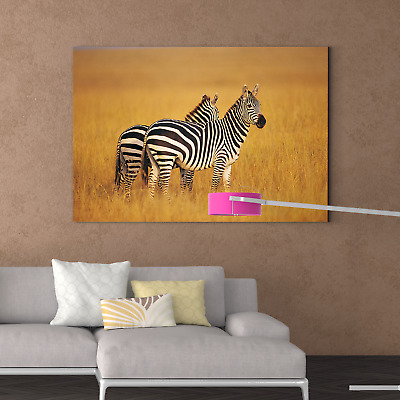60x100x3cm Abstract Fantasy Zebra Stretched Canvas Prints Wall Art Decor FRAMED