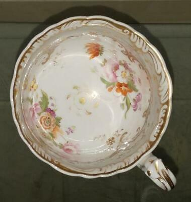 Exquisite Antique Coalport Hand Painted and Gilded Adelaide Rococo Cup