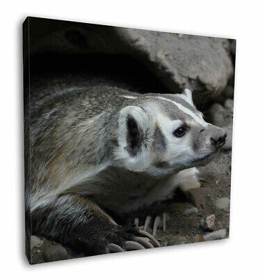 """Badger on Watch 12""""x12"""" Wall Art Canvas Decor, Picture Print, ABA-2-C12"""