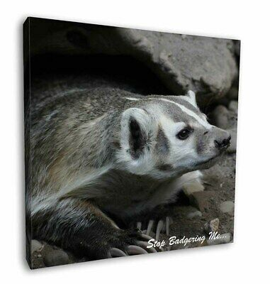 """Badger-Stop Badgering Me! 12""""x12"""" Wall Art Canvas Decor, Picture Prin, ABA-3-C12"""