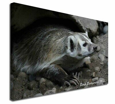 """Badger-Stop Badgering Me! 30""""x20"""" Wall Art Canvas, Extra Large Pict, ABA-3-C3020"""