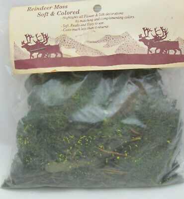 New Old Stock 50 gms Reindeer Moss for Miniatures or Crafts