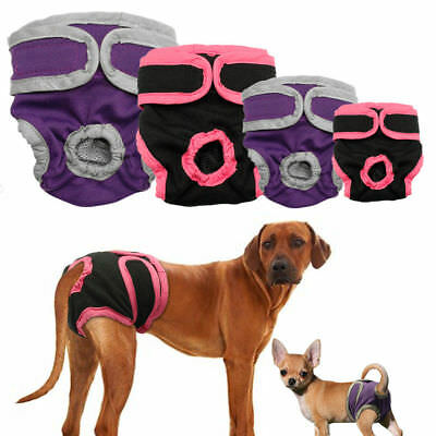 Dog Nappy Diaper Incontinence Season Pants Adjustable Black Purple Season Puppy