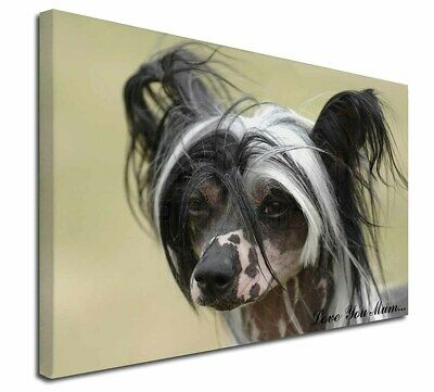 "Chinese Crested Dog 'Love You Mum' 30""x20"" Wall Art Canvas, Ex, AD-CHC2lym-C3020"
