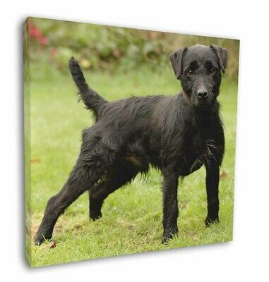 """Fell Terrier Dog 12""""x12"""" Wall Art Canvas Decor, Picture Print, AD-FT1-C12"""