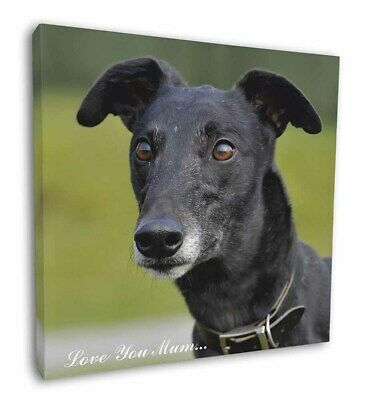 "Black Greyhound 'Love You Mum' 12""x12"" Wall Art Canvas Decor, Pic, AD-GH8lym-C12"