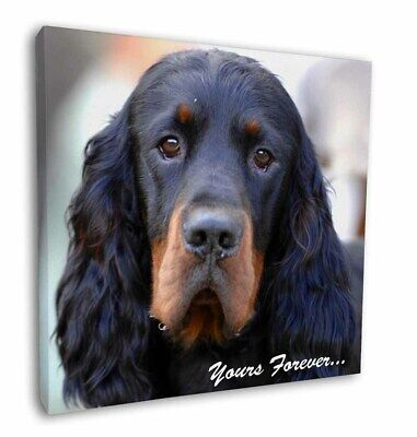 """Gordon Setter 'Yours Forever' 12""""x12"""" Wall Art Canvas Decor, Pictu, AD-GOR2y-C12"""
