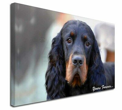 """Gordon Setter 'Yours Forever' 30""""x20"""" Wall Art Canvas, Extra Lar, AD-GOR2y-C3020"""
