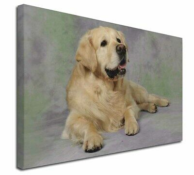 """Gold Golden Retriever 30""""x20"""" Wall Art Canvas, Extra Large Picture, AD-GR2-C3020"""