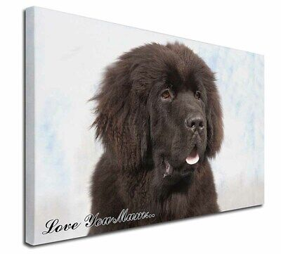"Newfoundland Dog 'Love You Mum' 30""x20"" Wall Art Canvas, Extra , AD-NF3lym-C3020"