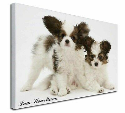"Papillon Dogs 'Love You Mum' 30""x20"" Wall Art Canvas, Extra La, AD-PA65lym-C3020"