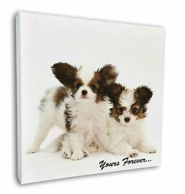"Papillon Dogs 'Yours Forever' 12""x12"" Wall Art Canvas Decor, Pictur, AD-PA66-C12"