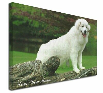 "Pyrenean Mountain Dog 'Love You Mum' 30""x20"" Wall Art Canvas, E, AD-PM1lym-C3020"