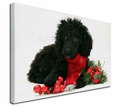 AD-CP7RBM Book Mark Christmas Stocking Filler//Bi Poodle with Red Rose Bookmark