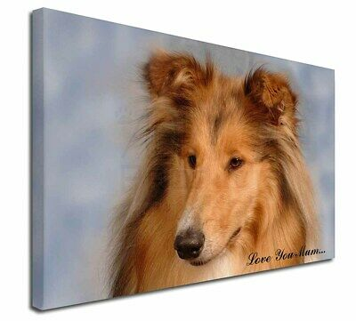 """Rough Collie Dog 'Love You Mum' 30""""x20"""" Wall Art Canvas, Extra , AD-RC1lym-C3020"""