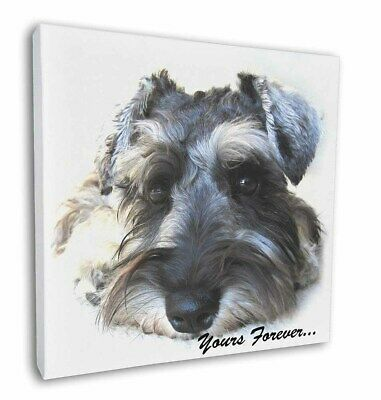 "Schnauzer Dog 'Yours Forever' 12""x12"" Wall Art Canvas Decor, Pictur, AD-S68y-C12"