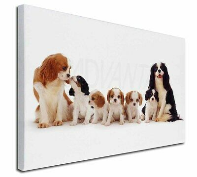 """King Charles Spaniel Dogs 30""""x20"""" Wall Art Canvas, Extra Large P, AD-SKC11-C3020"""