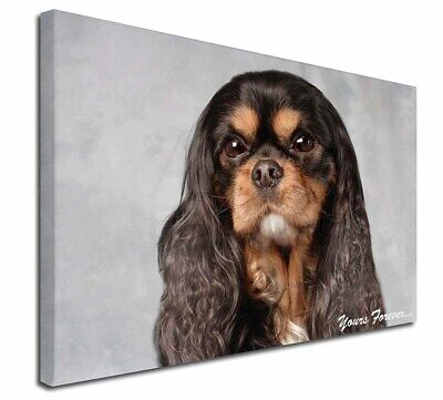 """Tri Col King Charles 'Yours Forever' 30""""x20"""" Wall Art Canvas, Ex, AD-SKC2y-C3020"""