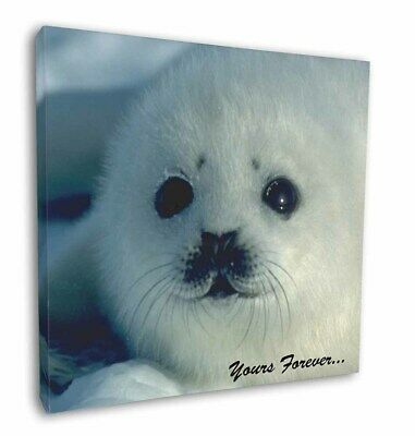 """Snow Seal 'Yours Forever' 12""""x12"""" Wall Art Canvas Decor, Picture Pri, AF-S14-C12"""