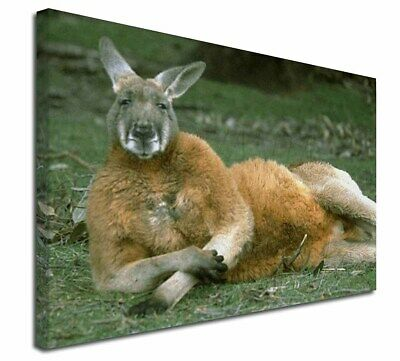 "Cheeky Kangaroo 30""x20"" Wall Art Canvas, Extra Large Picture Print D, AK-1-C3020"