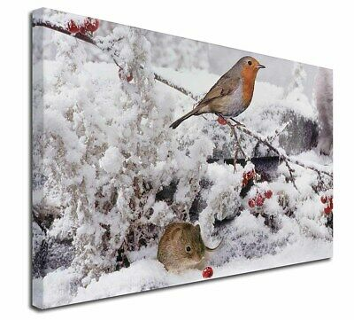 """Snow Mouse and Robin Print 30""""x20"""" Wall Art Canvas, Extra Large Pic, AMO-5-C3020"""