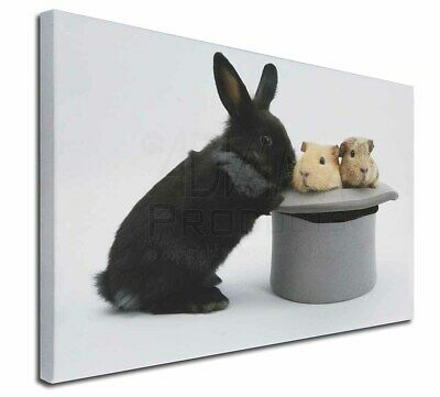 """Rabbit and Guinea Pigs in Top Hat 30""""x20"""" Wall Art Canvas, Extra La, AR-10-C3020"""