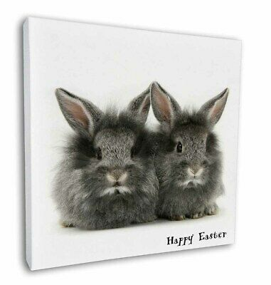 """Fluffy Rabbits 'Happy Easter' 12""""x12"""" Wall Art Canvas Decor, Picture, AR-3EA-C12"""