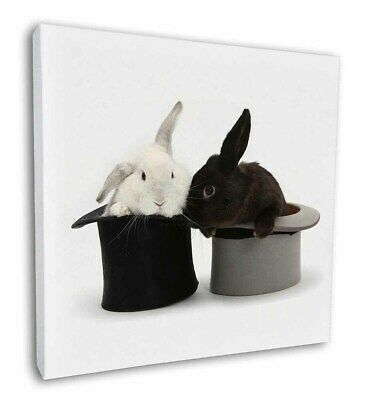 """Rabbits in Top Hats 12""""x12"""" Wall Art Canvas Decor, Picture Print, AR-7-C12"""