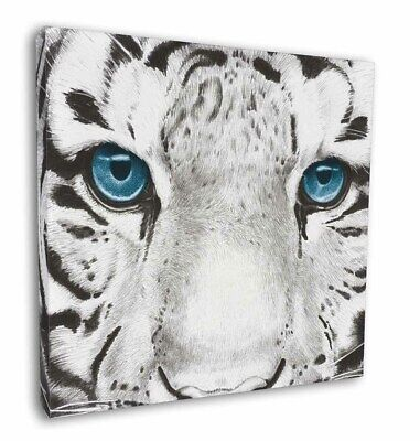 "Siberian White Tiger 12""x12"" Wall Art Canvas Decor, Picture Print, AT-11-C12"