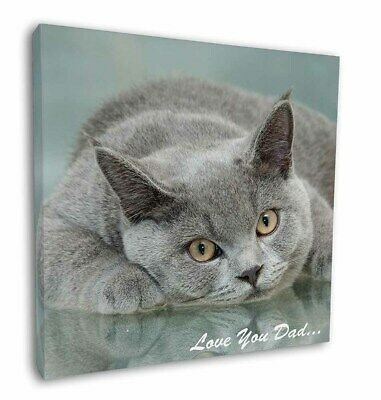 "British Blue Cat 'Love You Dad' 12""x12"" Wall Art Canvas Decor, Pictur, DAD-2-C12"