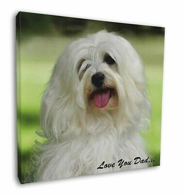 "Havanese Dog 'Love You Dad' 12""x12"" Wall Art Canvas Decor, Picture P, DAD-55-C12"
