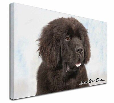 "Newfoundland Dog 'Love You Dad' 30""x20"" Wall Art Canvas, Extra Lar, DAD-79-C3020"