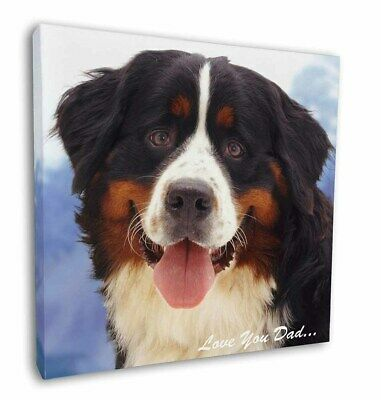 "Bernese 'Love You Dad' 12""x12"" Wall Art Canvas Decor, Picture Print, DAD-8-C12"