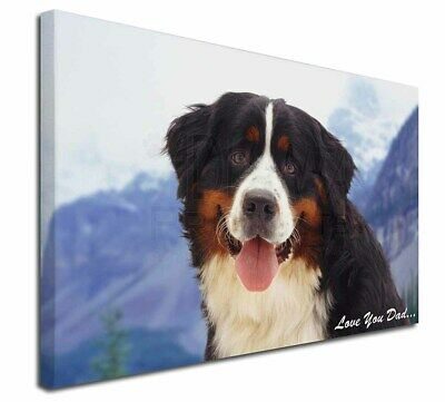 "Bernese 'Love You Dad' 30""x20"" Wall Art Canvas, Extra Large Picture, DAD-8-C3020"