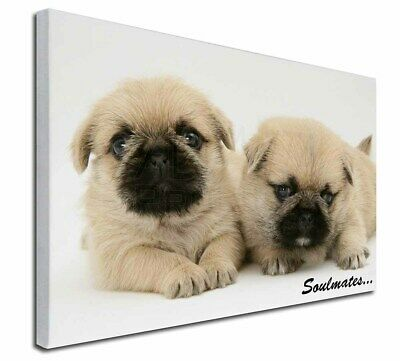 """Pugzu Puppy Dogs 'Soulmates' 30""""x20"""" Wall Art Canvas, Extra Large, SOUL-42-C3020"""