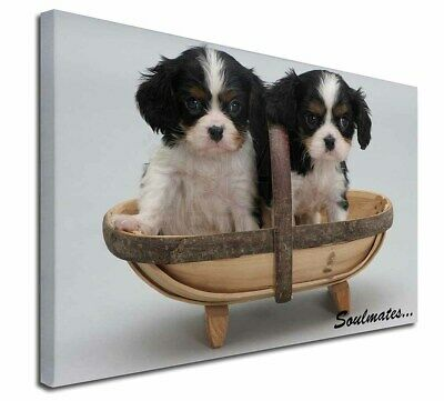 """King Charles Puppies 'Soulmates' 30""""x20"""" Wall Art Canvas, Extra L, SOUL-55-C3020"""