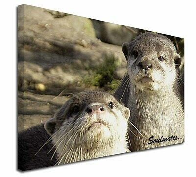 AO-3PW Floating Otter Glass Paperweight in Gift Box Christmas Present