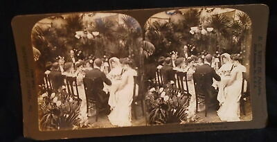** Antique Stereoscope Stereoview Card The Wedding Breakfast 1902 H.C. White *