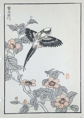 LONG-TAILED TIT : Print Of a 1880s JAPANESE WOODBLOCK Bird Print By BAIREI