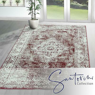 ALL SIZE Antique Persian Floral GEOMETRIC CARPETS Medallion Red TRADITIONAL RUGS